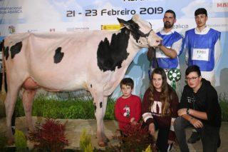 """""""Buscamos vacas para concursos y rentables en la granja ya que, al fin, vivimos de la leche"""""""