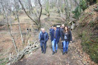 Medio Rural anuncia la próxima convocatoria de la Mesa de la Castaña