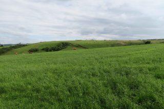 Claves prácticas de la Lei de Recuperación da Terra Agraria
