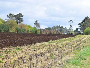 Razones por las que sí es rentable meter un cultivo de invierno en rotación con el maíz