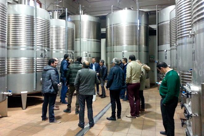 La Xunta convoca las ayudas para la elaboración y comercialización de vino