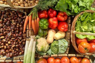 Informe sobre la agricultura ecológica en España: primer país de la UE y cuarto del mundo en hectáreas