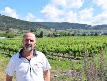 """""""Tenemos solicitudes para plantar viñedos de 30 o 40 hectáreas en Valdeorras, y cada vez a más altura"""""""