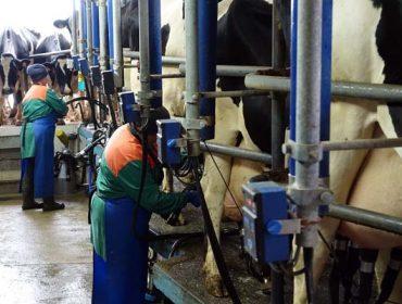 Medio Rural estudia crear cuadrillas de sustitución para granjas afectadas por la Covid-19
