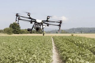 La Xunta empezará a controlar la PAC por drones y satélite en 3000 parcelas
