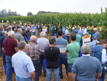 Dekalb presenta en Arzúa sus próximas novedades en cultivo de maíz