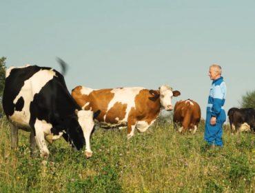 Un ganadero gallego protagonista de la campaña de Lactalis por sus 20 años de leche ecológica