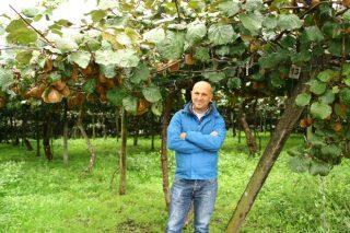 «Logramos aumentar la producción de kiwi un 30% y ser más sostenibles»