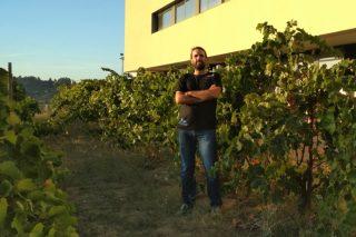 """""""Estamos probando con éxito tratamientos ecológicos para controlar las enfermedades fúngicas en viñedo"""""""