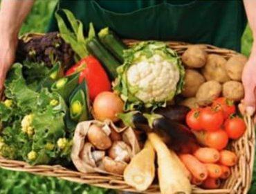 Jornada sobre mejora en la planificación y comercialización de las producciones ecológicas