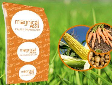 Magnical Plus, la caliza granulada que combina efecto inmediato y prolongado