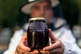 Muy buena cosecha de miel de eucalipto en la costa y más floja en zonas de interior dependientes del roble y el castaño
