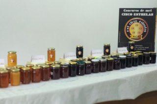 Las 5 mejores mieles de Galicia premiadas en el I Concurso Miel 5 Estrellas