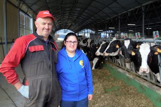 Mingón Holstein, nuevas instalaciones y relevo generacional en Asturias