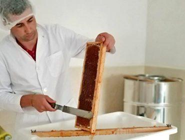 Nuevas formaciones sobre miel en Becerreá, As Pontes y Monforte de Lemos