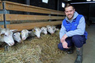 Ganadería Rivera Otero, la apuesta de un joven de 25 años por el sector ovino