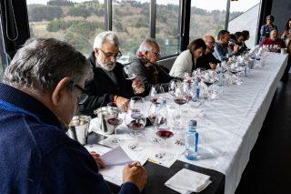 Catas online de los vinos de la D.O. Ribeira Sacra para empezar el 2021