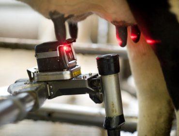 Webinar este miércoles sobre alimentación en ganaderías de vacuno de leche con robots de ordeño