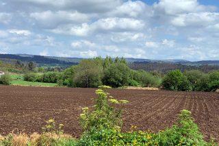 La Xunta abona estos días 16 millones de euros a 4.000 productores por las ayudas de la PAC 2019