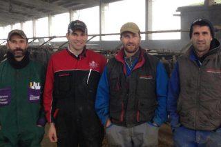 Ganadería Ambrosini: 41 litros de media por vaca con un 4,29% de grasa