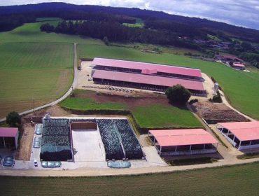Leite Noso da el salto en el campo, con más de 200.000 litros diarios de recogida