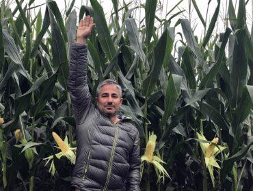 Nutrición integral del maíz forrajero: Agromaster Start Mini + Agroleaf
