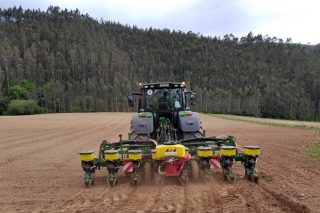 Francia pronostica escasez de semillas de maíz para la campaña 2021