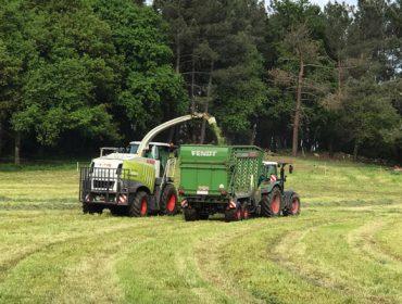 Campaña de ensilado de la hierba: Altas producciones pero con retraso por las lluvias