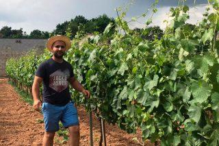Fanrela, un vino para el optimismo, nacido en plena pandemia