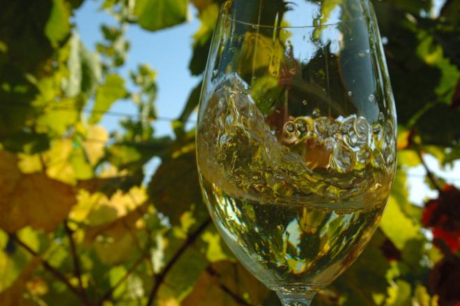 El éxito del vino gallego: Multiplicó por 4 su precio en el mercado internacional en poco más de diez años
