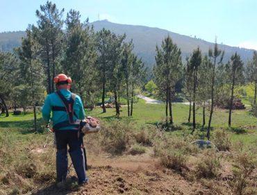 La Xunta actuará en 5.500 hectáreas de monte y 2.200 kilómetros de pistas para prevenir fuegos