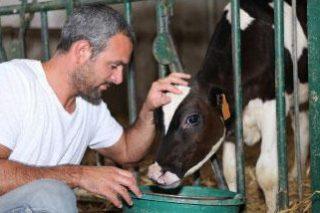 Charla online sobre cómo reducir la transmisión de enfermedades en ganado