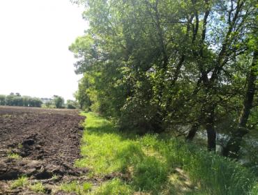 ¿Qué ecoesquemas de la PAC pueden encajar en las granjas gallegas?