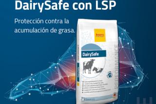 DairySafe: El aditivo de preparto para mejorar la salud del hígado en vacas lecheras y reducir la cetosis