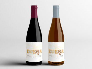 Presentada la nueva cosecha de vino de la EVEGA, elaborado con variedades autóctonas gallegas
