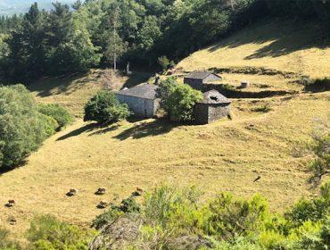 La Cornisa Cantábrica y Galicia concentran el abandono de tierras de cultivo en España