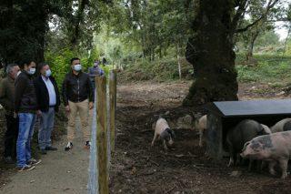 Medio Rural anuncia que están en marcha 18 aldeas modelo en Galicia