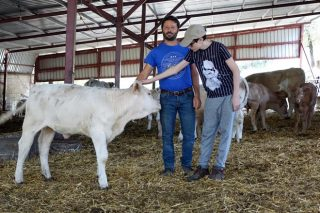 """""""Nos jugamos el futuro de la ganadería extensiva en la reforma de la PAC"""""""