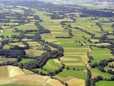 Los bosques de ribera gallegos, una potencialidad ambiental a apoyar en la próxima PAC