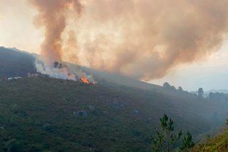 Diez colectivos urgen medidas para frenar la degradación de montes afectados por incendios