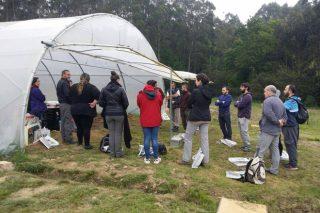 Cursos sobre control de plagas y manejo del suelo en agricultura ecológica