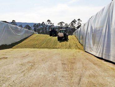 Así funciona el CAVI, el mayor centro de forrajes de Galicia para vacuno de leche