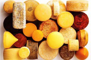 Curso de análisis sensorial de los quesos gallegos