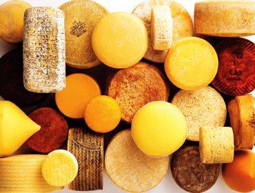 El Sindicato Labrego organiza un cursode elaboración de quesos en Chantada