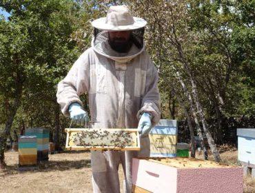 """""""Cuando eché la vista al campo, vi que la apicultura era de lo más modular que había para emprender"""""""
