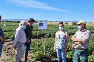 «El INORDE tiene una cercanía a los problemas cotidianos de agricultores y ganaderos de Ourense que no tienen otras administraciones»