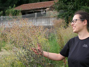 La gallega Trasdeza Natur, premio del Ministerio a la Inovación para Mujeres Rurales