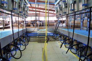 Claves sobre la máquina de ordeño y su mantenimiento (I)