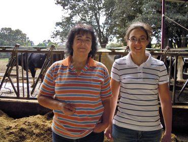 San Martiño SL, relevo en feminino en una ganadería que ordeña 235 vacas