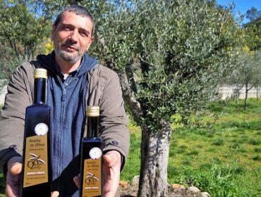 Ouro de Quiroga, un proyecto para recuperar la producción autóctona de aceite gallego